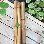 Palos De Bambú 120 cm Largo 12 mm Diámetro