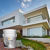 Koraza blanco 5 galones