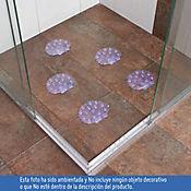 Set x5 Antideslizantes para Baño Conchas Transparente