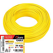 Cable #12 100m Amarillo