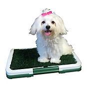 Parque Canino Puppy Pad 46.8x34 cm