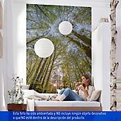 Fotomural 184x254 cm Canopy