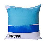 Cojín 45x45 cm Pantone Azul
