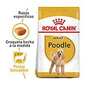 Alimento Raza Poodle Adulto 1.5 kg