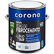 Pintura tejas fibrocemento blanco 1 gl