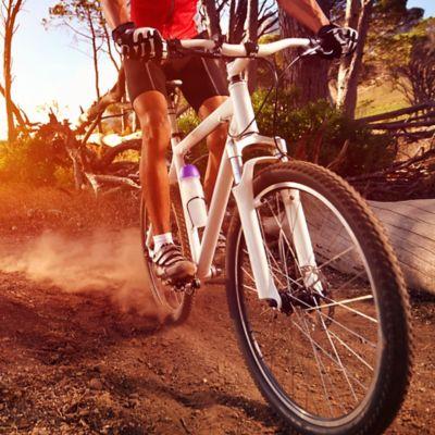 Bicicletas Todoterreno y de Montaña