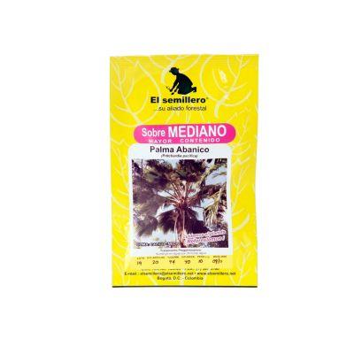 Semilla palma abanico 10 gramos