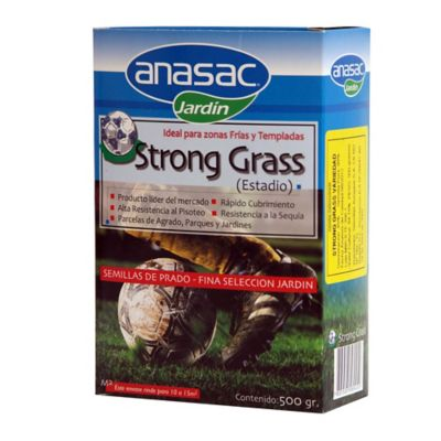 Semilla pasto para campos deportivos 500 gramos