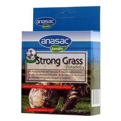 Semilla pasto para campos deportivos 50 gramos
