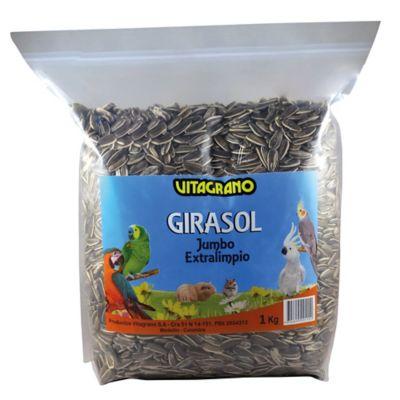 Girasol 1 kilo