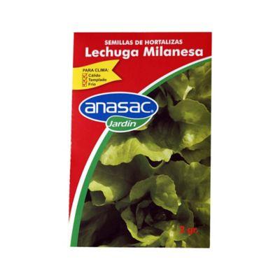 Semilla lechuga milanesa 2 gramos