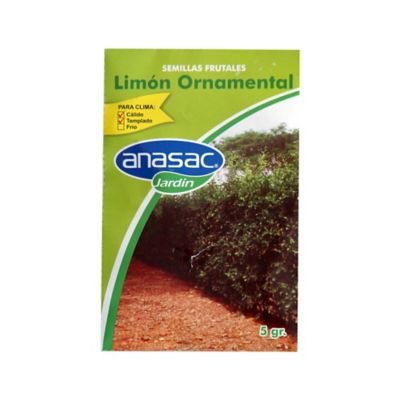 Semilla swinglia limón ornamental 5 gramos