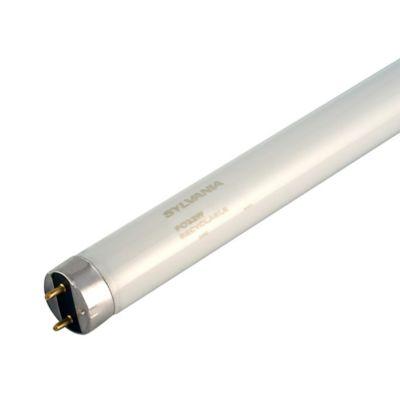 Tubo Fluorescente T8 2784 Lúmenes 32w  Luz Blanca