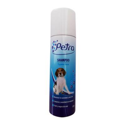 Shampoo Espuma Seca 170 cc