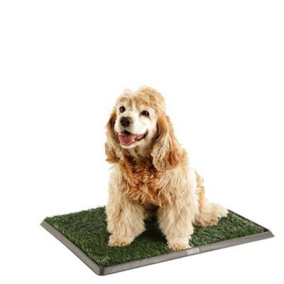 Grama de Entrenamiento Para Perros 51 x 64 cm