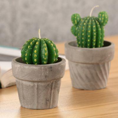 Vela Cactus Exterior Tarro