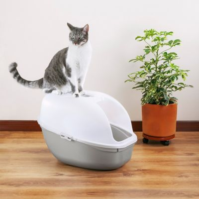 Arenero Para Gato Mocca