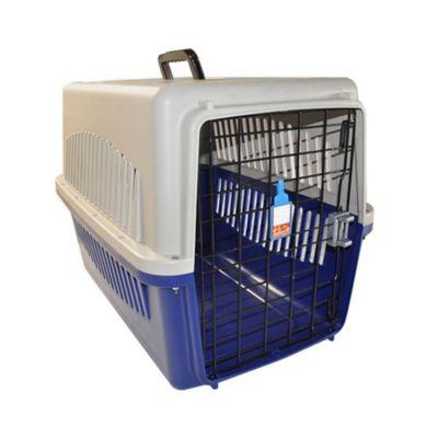 Guacal Plástico # 3 para Perros 81 x 59,5 x 60 cm Beige - Azul