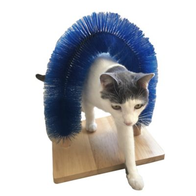 Arco Rascador Catobrush Azul