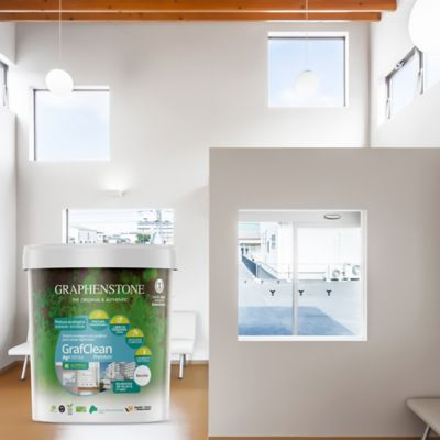 Pintura para Interior/Exterior Con Grafeno Ion Plata Con Propiedad Antibacterial 1/4 Galón