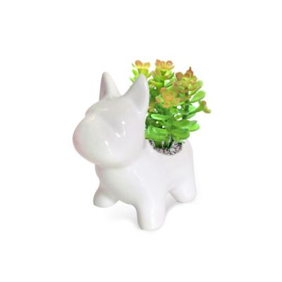 Planta Artificial Matera Dog 8 x 13 x 12 cm