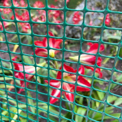 Malla Reja 1/2 X 1 Plastica Verde de 1.50 X 30 Mts