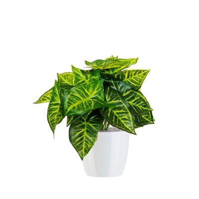 Planta Artificial Con Matera Plástica 43 cm Variegada