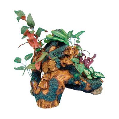 Decoración Acuario Jardín Driftwood Trunk 1