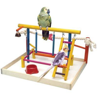 Centro Actividad para Aves XL