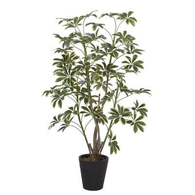 Planta Artificial Schefflera 172 cm