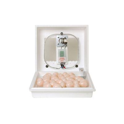 Incubadora de Huevos con Circulación de Aire
