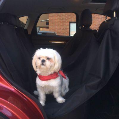 Protector para Carro de Mascotas Negro
