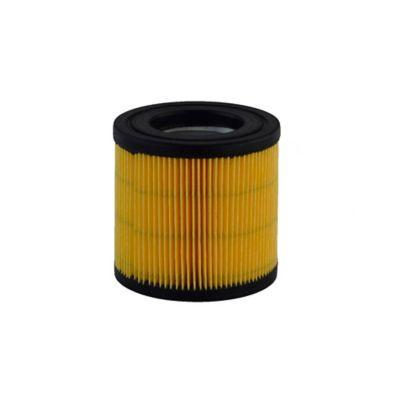 Filtro Aspiradora Karcher Wd3250/Mv1-Wd1-3/A2204