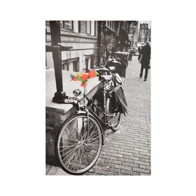 Canvas 40x60 Bicicleta Blanco y Negro
