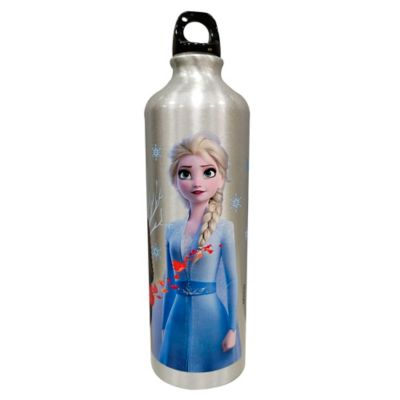Botella Aluminio 750ml Frozen