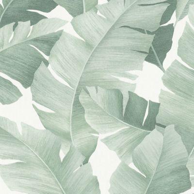 Set x 3 Papel Mural Hojas Tropicales Verde 100x53 cm