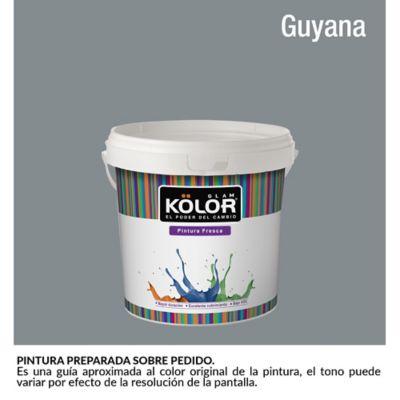 Pintura para Interior Gris Oscuro Guyana Deluxe Mate 1/2 Galón
