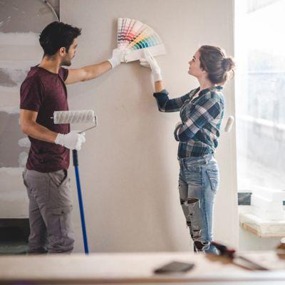 Asesoría Virtual En Aplicación de Pintura