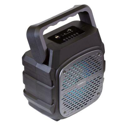 Parlante Inalámbrico BT Luces LED+Microfono-3042BK Negro