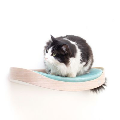Repisa Flotante para Gatos Repimodo Gris Plata - Celeste