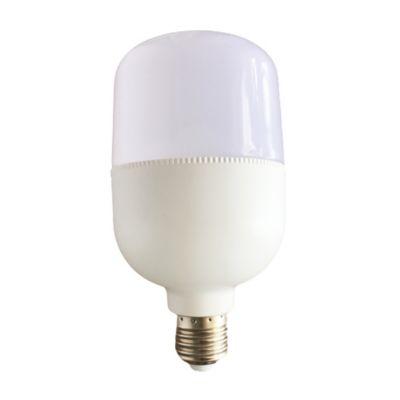 Bombillo T/Capsula SMD LED 10W E27 6400K