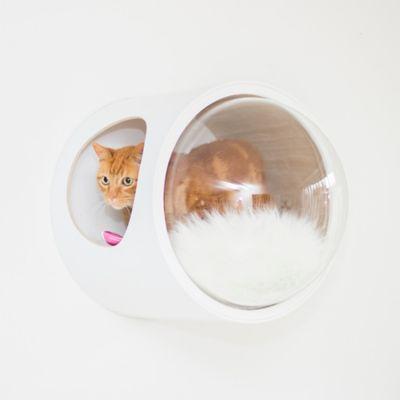Casa para Gatos Mododomo Flotante Blanco