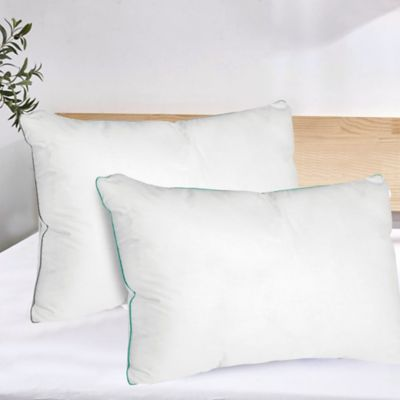 Set x2 Almohadas Sesgo Color 50x70 cm