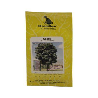 Semilla caoba sb x 5 gramos