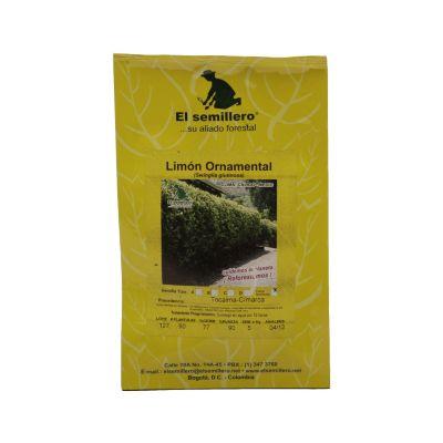 Semilla limón ornamental sb x 5 gramos