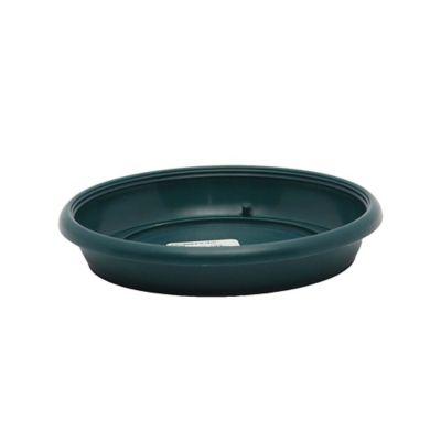 Plato matera 16 cm - 18 cm verde