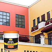 Pintura Exterior Koraza Blanco Doble Vida  Caneca
