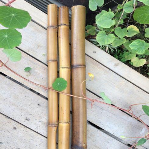 Palos De Bambu X 120cm Largo 12cm Diametrocercashomecentercomco - Palos-de-bambu