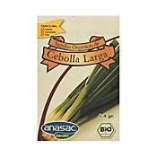 Semilla Orgánica Cebolla Larga 0.4 gr