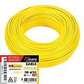 Cable #14 100m Amarillo